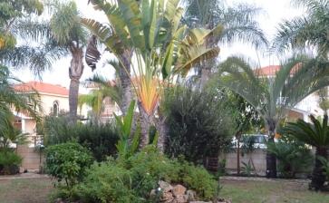 ML244, House for sale near the beach in Meneou