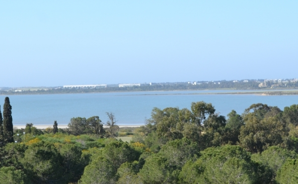 Two bed apartment for sale in Faneromeni Larnaca