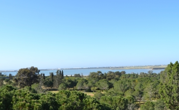 One bed apartment for sale in Faneromeni